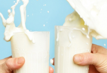 Lactose and your training